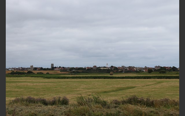 Open countryside in Southwold