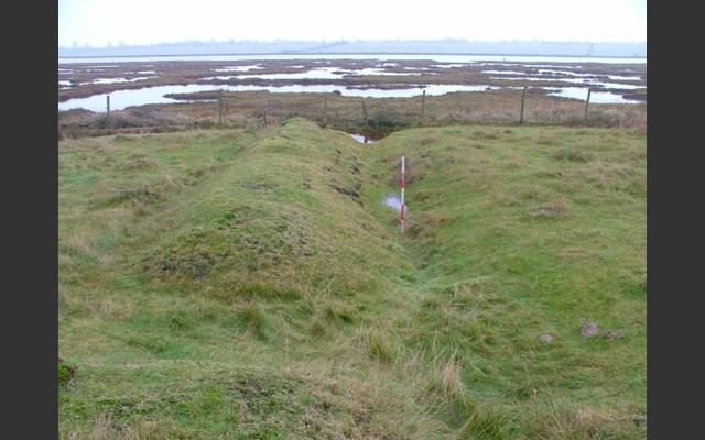 Bank and ditch earthwork at Ray Island